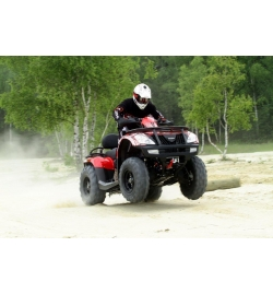 QUAD GOES COBALT MAX LTD EPS (EURO 4)